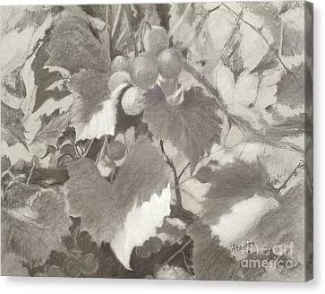 Sunlit Arbor Canvas Print by Mary Lynne Powers