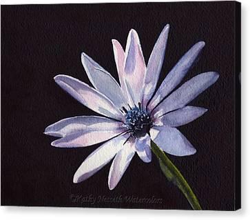 Sunlit Daisy Canvas Print by Kathy Nesseth