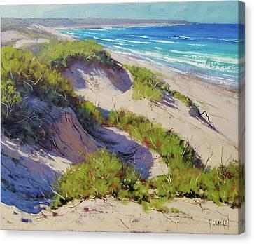 Beach Scenes Canvas Print - Sunlit Dunes Norah Head  Nsw Australia by Graham Gercken