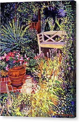 Sunlit Garden Patio Canvas Print by David Lloyd Glover