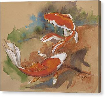 Sunlit Goldfish Canvas Print by Tracie Thompson