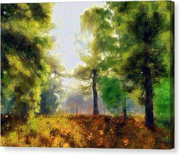 Sunlit Meadow Painted Canvas Print by Cynthia Decker
