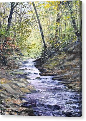 Sunlit Stream Canvas Print by Penny Neimiller
