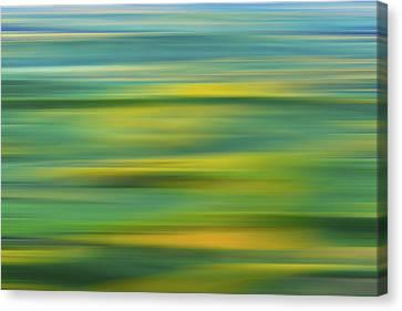 sunlite lands X Canvas Print