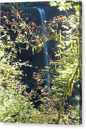 Canvas Print featuring the photograph Sunlite Silver Falls by Thomas J Herring