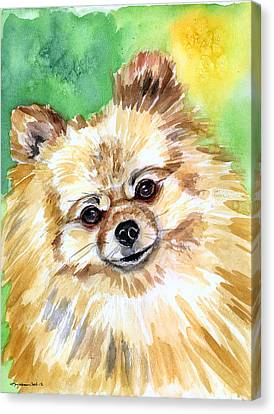 Sunny - Pomeranian Canvas Print by Lyn Cook