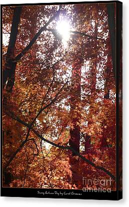 Sunny Autumn Day Poster Canvas Print