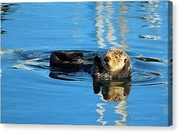 Sunny Faced Sea Otter Canvas Print