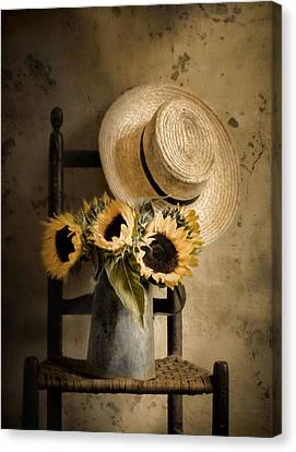 Sunny Inside Canvas Print by Robin-Lee Vieira