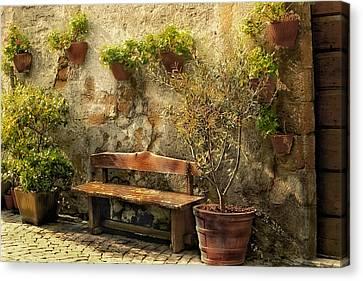 Sunny Italian Afternoon Canvas Print by Lynn Andrews