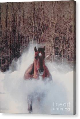 Crazy Horse Canvas Print - Sunny Running For The Barn. by Jeffrey Koss