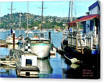 Sunny Sausalito Canvas Print by Michael Cleere