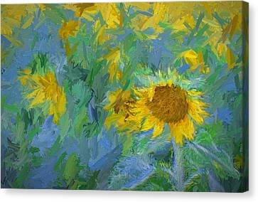 Sunny Sunflower Canvas Print