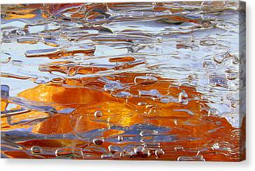 Sunny Water 1 Canvas Print