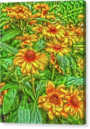 Sunnyday Canvas Print