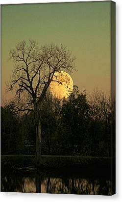 Canvas Print featuring the photograph November Supermoon  by Chris Berry