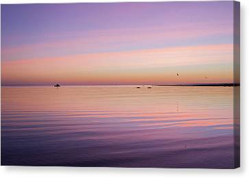 Early Morning Riser Canvas Print by Saint Cloud