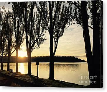 Sunrise And Silhouettes  Canvas Print