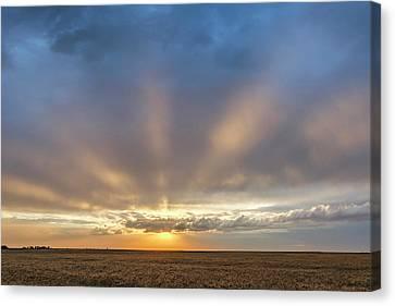 Sunrise And Wheat 03 Canvas Print
