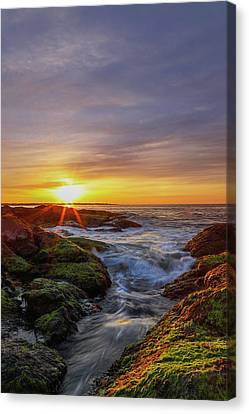Sunrise At Beavertail State Park  Canvas Print