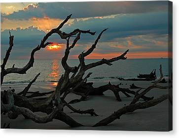 Sunrise At Driftwood Beach 2.2 Canvas Print by Bruce Gourley