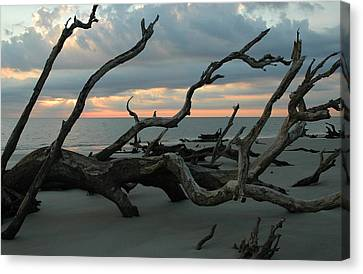 Sunrise At Driftwood Beach 4.1 Canvas Print by Bruce Gourley