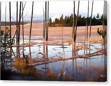 Sunrise At Fountain Paint Pots, Yellowstone National Park, Usa Canvas Print by Greg Sigrist