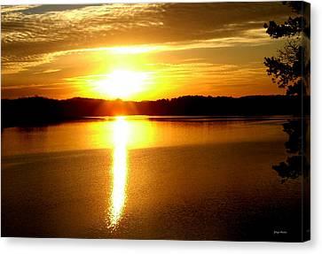 Sunrise At Lake Lanier 001 Canvas Print by George Bostian