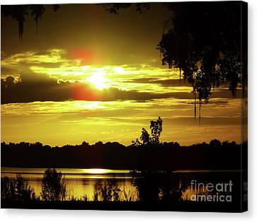Sunrise At The Lake Canvas Print by D Hackett