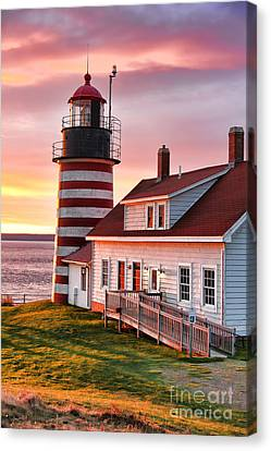 Sunrise At West Quoddy Head Canvas Print by Jack Schultz