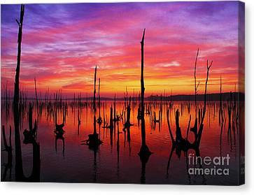 Sunrise Awaits Canvas Print