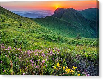 Sunrise Behind Goat Wall Canvas Print