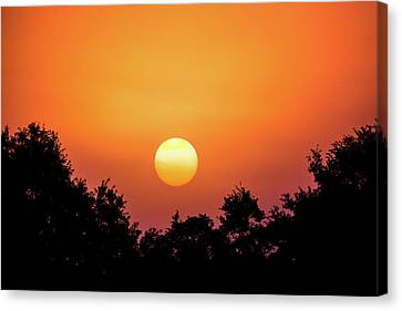 Canvas Print featuring the photograph Sunrise Bliss by Shelby Young