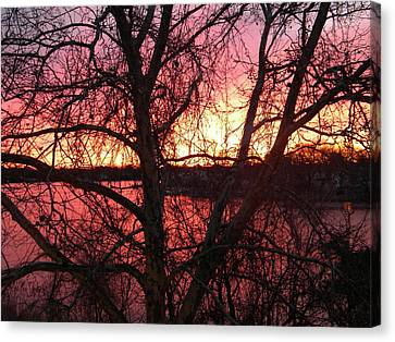Sunrise Canvas Print by Cassandra Donnelly