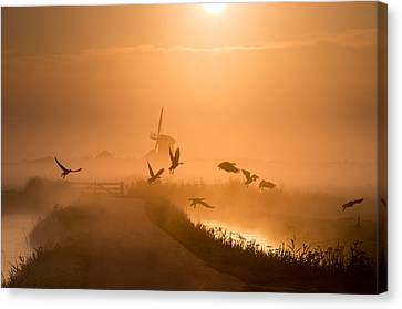 Sunrise Canvas Print - Sunrise Flight by Harm Klaverdijk