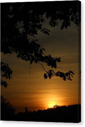 Sunrise Gold Canvas Print by Diannah Lynch