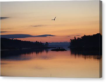 Canvas Print featuring the photograph Sunrise In Blue Hill V by Greg DeBeck