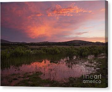 Sunrise In The Wichita Mountains Canvas Print by Iris Greenwell