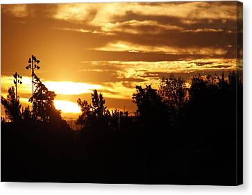 Canvas Print featuring the photograph Sunrise by Ivete Basso Photography