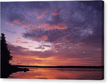 Sunrise Lights Up The Sky Over Cobscook Canvas Print by Stephen Alvarez