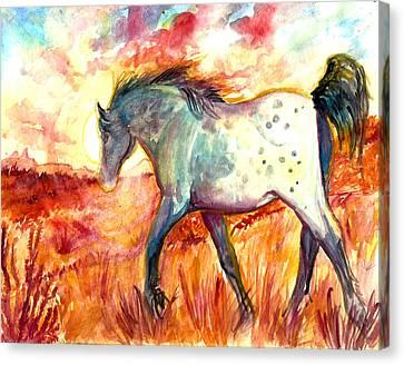 Sunrise Mare Canvas Print by Jenn Cunningham