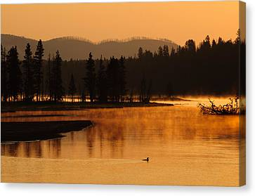 Sunrise Near Fishing Bridge In Yellowstone Canvas Print by Bruce Gourley