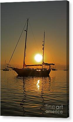Canvas Print featuring the photograph Sunrise by Nicola Fiscarelli