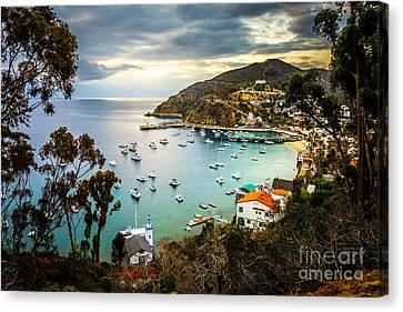Sunrise On Catalina Island Avalon Bay California Canvas Print by Paul Velgos