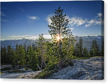 Yosemite National Park Canvas Print - Sunrise On Sentinel Dome by Rick Berk
