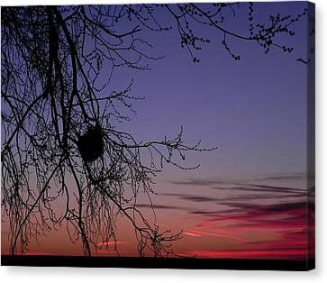 Sunrise On The Colorado Plains Canvas Print by Adrienne Petterson