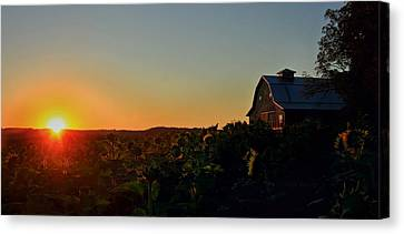 Canvas Print featuring the photograph Sunrise On The Farm by Chris Berry