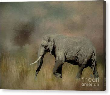 Sunrise On The Savannah Canvas Print