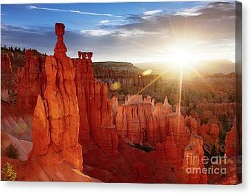 Thor Canvas Print - Sunrise Over Bryce Canyon, Utah, Usa by Matteo Colombo