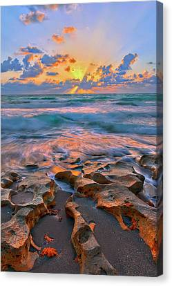 Sunrise Over Carlin Park In Jupiter Florida Canvas Print by Justin Kelefas
